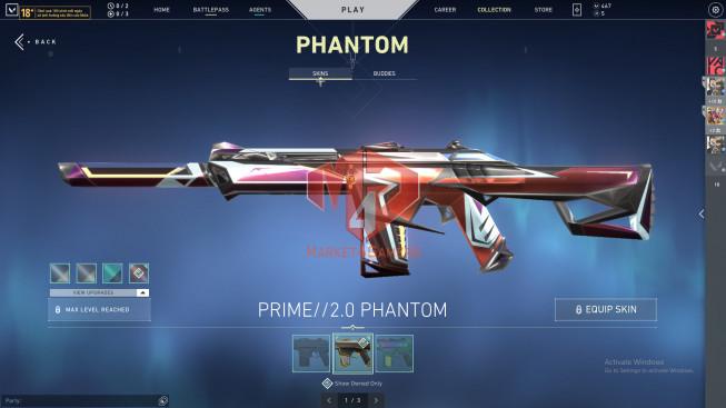 49 Skin – Full Agent – 2 Prime Frenzy, 2 Bucky, 4 Vandal, 4 PhanTom – Full BP S1>S5