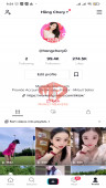 ✅ Account 99.4k Followers – 274.5k Likes – Entertainment Channel – Registered Creator Fund and Live Stream